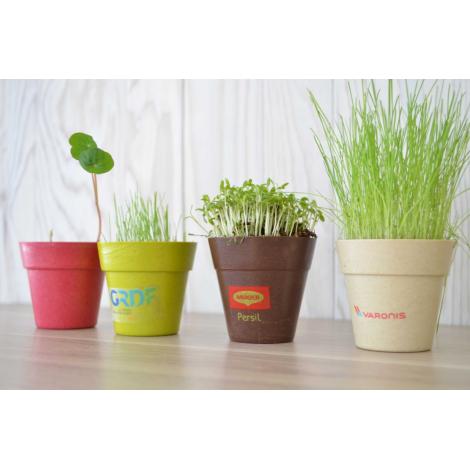 Kit de plantation publicitaire - pot biodégradable