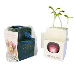 LA VÉGÉTAL-BOX KIT GRAINES