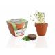 Kit de plantation publicitaire - Pot en terre cuite 6-8-10 cm