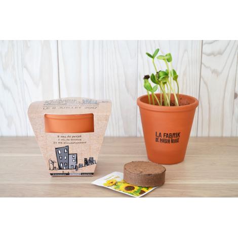 Kit de plantation Terre cuite 8 cm 10 cm