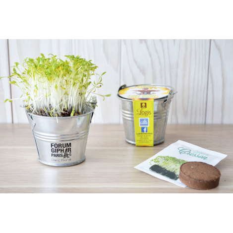 Kit de semis - mini pot zinc 6 cm