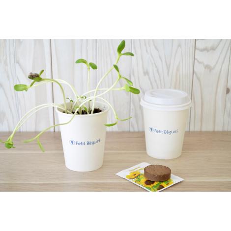 Kit de plantation publicitaire - pot en carton