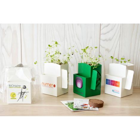 Kit de plantation - Végétal Box
