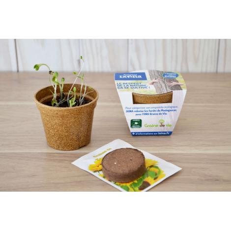 Kit de plantation publicitaire - Pot en paille de riz