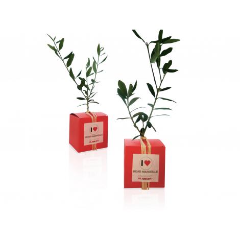 Le cube arbre publicitaire