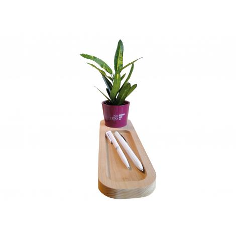 Plateau publicitaire avec plante - Naturel