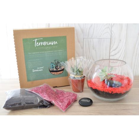 Terrarium publicitaire en kit avec une plante dépolluante