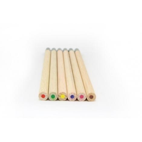 6 crayons de couleurs SPROUT à planter