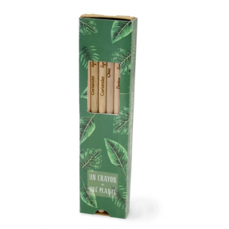 6 crayons de couleurs publicitaires - SPROUT à planter