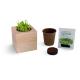 Cube bois publicitaire avec des graines