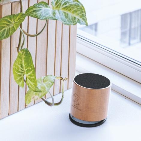 Enceinte publicitaire en bois - Speaker wood ring