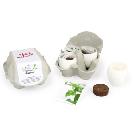 Kit de plantation personnalisable boite 4 oeufs à graines