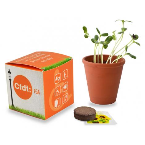 Cube de plantation publicitaire 7 ou 10 cm