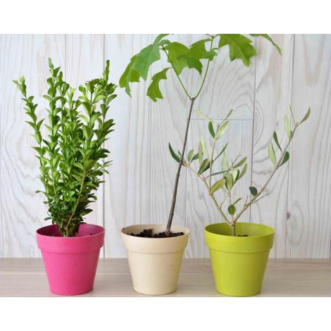 Plant d'arbre en pot fibre de bambou publicitaire