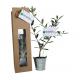 Plant d'arbre dans sac kraft publicitaire