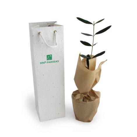 Plant d'arbre en sac à graines personnalisable