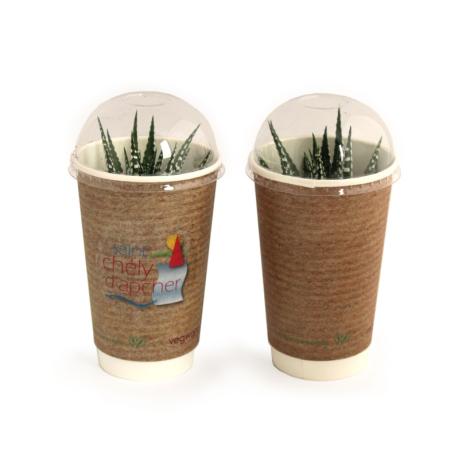 Smoothie personnalisable plante dépolluante