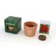 Cube de plantation standard