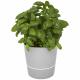 Pot hydro pour plantes publicitaire MEPAL